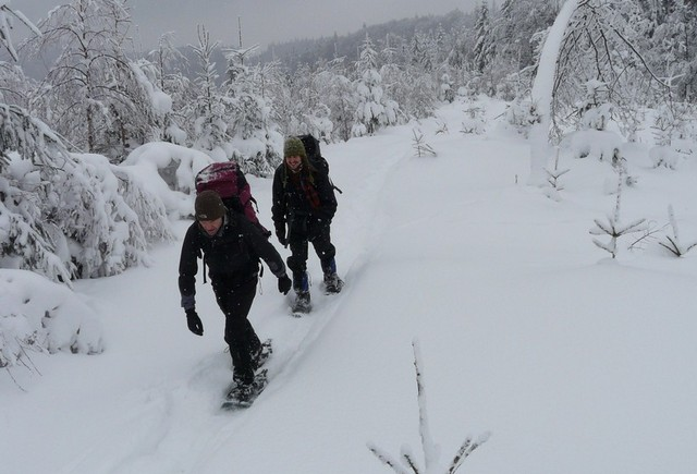 Members of Wolf Patrols walking through the snow-covered landscape