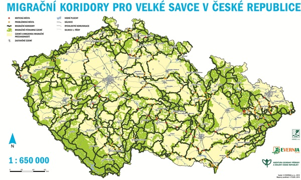 Map of wildlife corridors in the Czech Republic